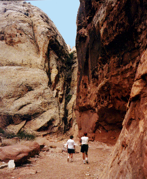 Capitol Reef Slot Canyons