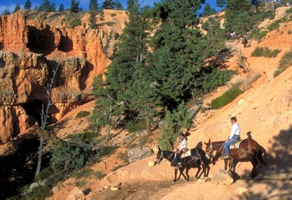 Horseback riding in Canyonlands