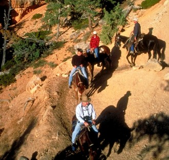 Horseback Riding near Grand Canyon