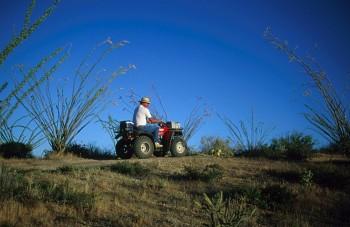 ATV Riding near Captiol Reef