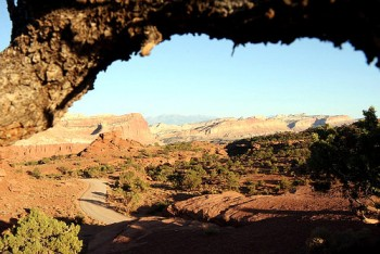 Hiking in Capitol Reef: Lower Muley Twist Canyon