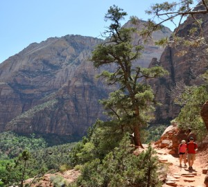 Zion National Park Hiking Trails