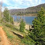 Mountain-Bike-Trail-at-Navajo-Lake