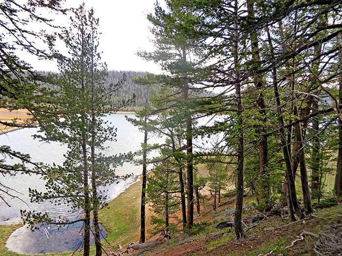Mountain Biking Navajo Lake