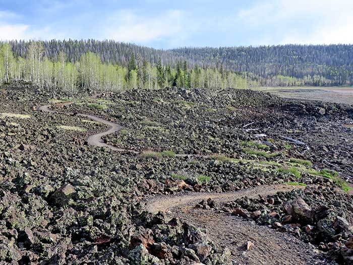 Navajo Lake Loop trail