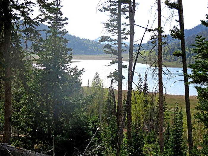 navajo lake mountain bike trail