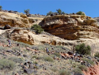 Guided Tour in Capitol Reef