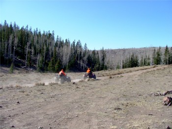 Hunting near Grand Staircase