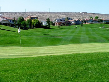 Golfing in Springdale
