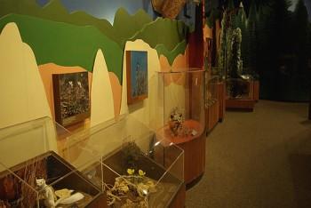 Museums near Bryce Canyon